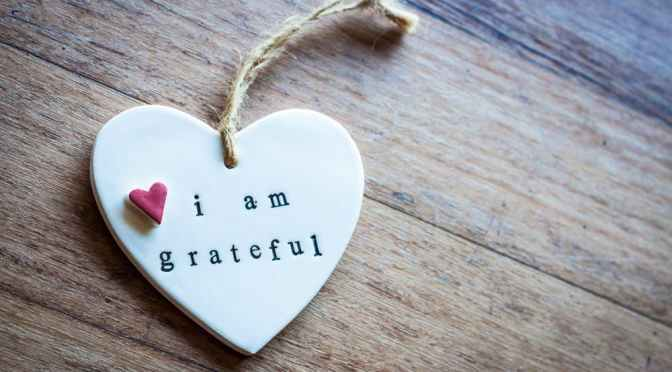 Gratitude is Always in Style